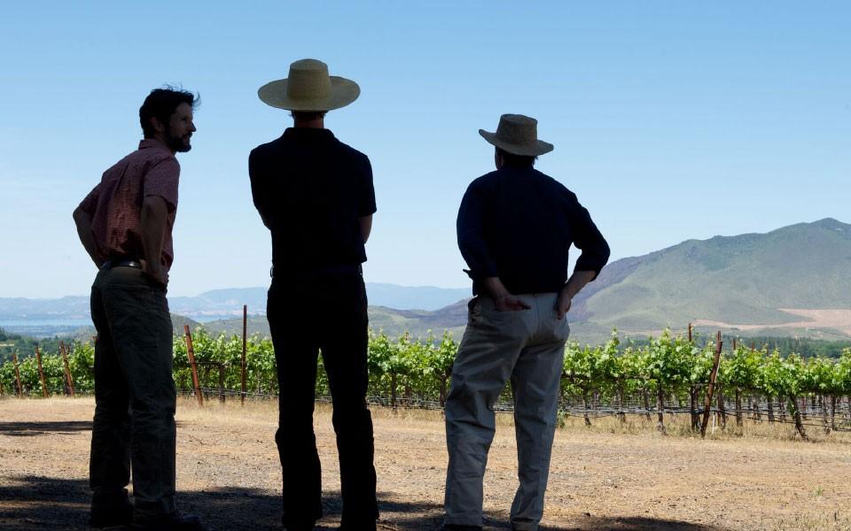 Team in vineyard